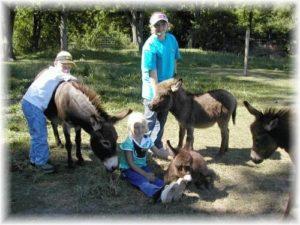 Family with miniature donkeys